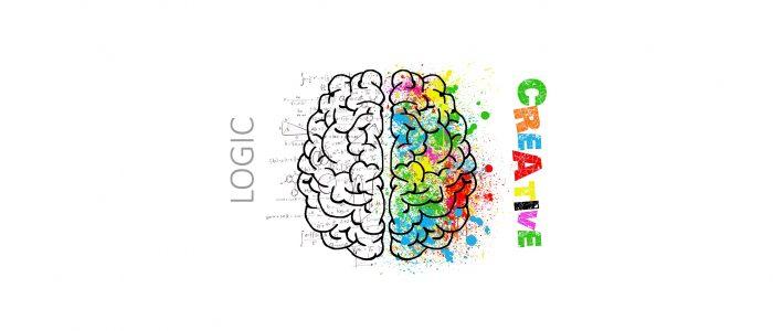 Neurosciences, éducation et Brain gym